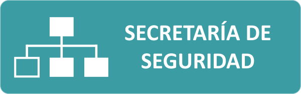 Organigrama Sec Seguridad